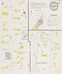 Freeport, 1923 by Sanborn Map Company