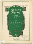 Budding Flowers : Danse La Grace