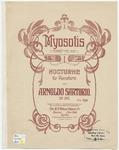 Myosotis : Forget me not