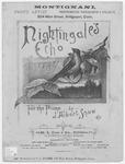 Nightingale's Echo Song