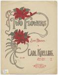 Two Flowers : Zwei Blumen