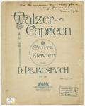 Walzer - Capricen : Suite