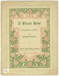 A Blush Rose : Flower Song