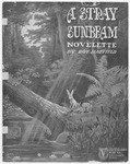 A Stray Sunbeam : A Novelette
