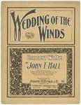 Wedding Of The Winds : Concert Waltzes