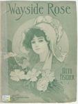 The Wayside Rose : Roslein Am Wege