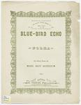Blue - Bird Echo Polka