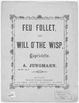 Will O' The Wisp. : Feu Follet