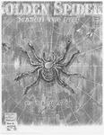 Golden Spider : Rag
