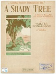A Shady Tree : Waltz Ballad
