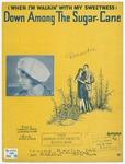 Down Among The Sugar - Cane