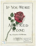 If You Were A Big Red Rose
