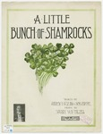 A Little Bunch Of Shamrocks : I Am Holding In My Hand
