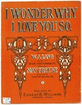 I Wonder Why I Love You So