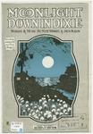 Moonlight Down In Dixie
