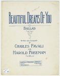 Beautiful Dreams of You : Ballad