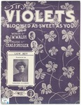 If Violets Bloomed as Sweet as You