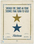 Should The Stars In Your Service Flag Turn To Gold