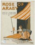 Rose Of Araby