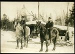 Horses at Logging Camp, Skinner, Maine