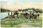 River Drivers, West Branch of Penobscot, Me. Postcard