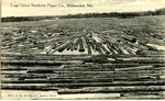 Millinocket, Maine, Great Northern Paper Company Logs