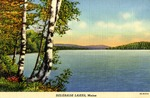 Belgrade Lakes, Maine, Postcard