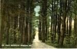 The Pines, Falmouth Foreside, Postcard