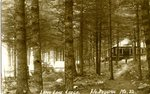 Long Lake Lodge Postcard