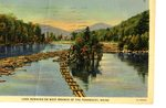 Penobscot River Logs Postcard