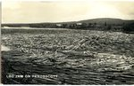 Penobscot River Log Jam Postcard