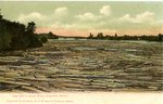 Ellsworth, Maine Postcard of a Log Jam