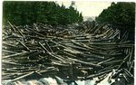 Carabassett River Log Jam Postcard
