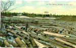 Log Jam Postcard