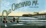 Old Orchard Great Steel Pier Postcard