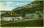 Moosehead Lake Cottages Postcard