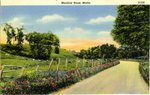 Meadow Road Postcard