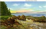 Rock Bound Coast of Maine Postcard