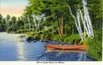 Maine Lake Shore Postcard