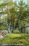 "Augusta, Maine, ""Shady Lane"" on Manley Estate"