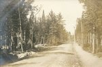 Cherryfield, Maine, Forest Road Near Sprague's Falls