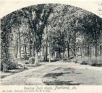 Portland, Maine, Deering Park Oaks