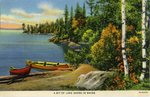 Bit of Lakeshore In Maine Postcard