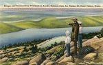 Acadia National Park, Ranger and Boys Looking Westward, Bar Harbor, Mt. Desert Island, Maine