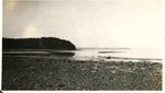 Lafayette National Park, Shore Scene