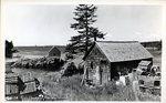 Bailey Island, Maine, Fish Houses