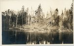 Lake House, Maine, Early 1920s