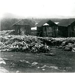 Katahdin Iron Works, Coal Kilns
