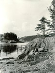 Roque Island, Maine, Shoreline
