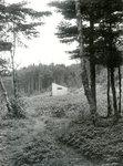 Roque Island, Maine, Camp Scene